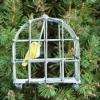 Oiseau dans sa cage