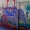 Elephant de passage